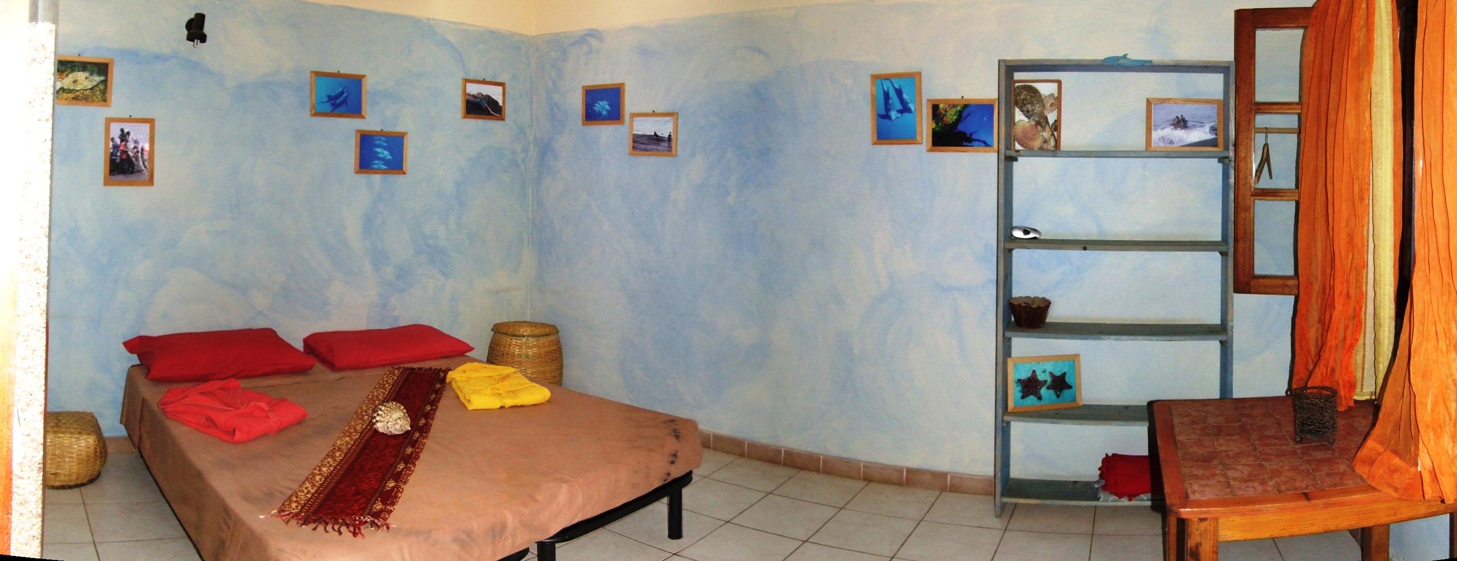 camera delfino1